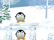 Pretty Penguins